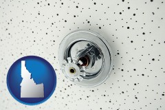 idaho a fire sprinkler head mounted in an acoustic tile ceiling
