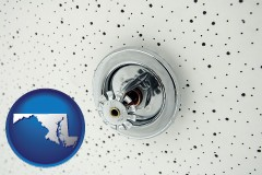 maryland a fire sprinkler head mounted in an acoustic tile ceiling