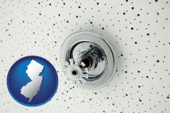 new-jersey a fire sprinkler head mounted in an acoustic tile ceiling