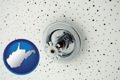 west-virginia a fire sprinkler head mounted in an acoustic tile ceiling
