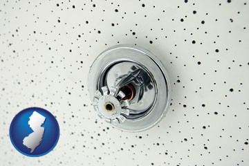 a fire sprinkler head mounted in an acoustic tile ceiling - with New Jersey icon